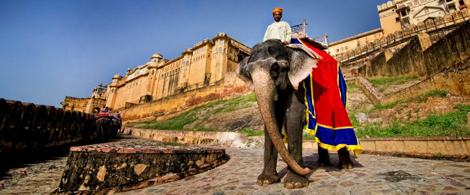 Rajasthan tour packages starting from Jaipur